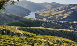 Pre & Pos Douro River programs
